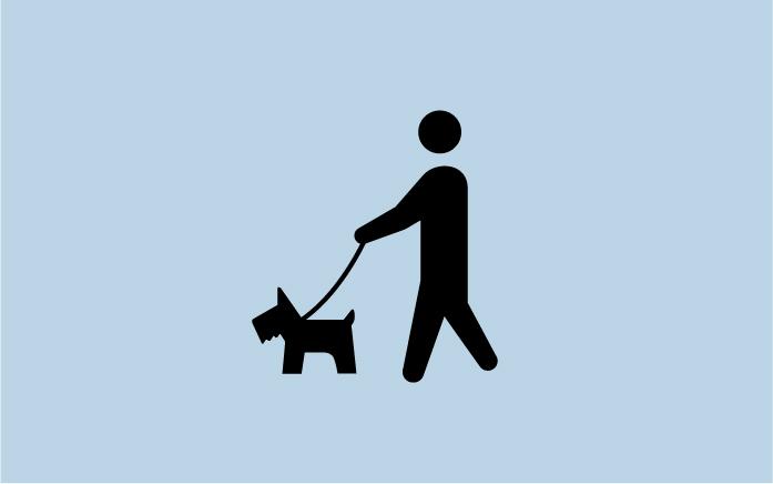 11犬の散歩